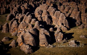 Beehive formations of the Bungle Bungles from the air. Purnululu Natiuonal Park, Kimberley WA