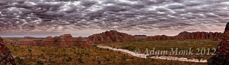 The Bungle Bungles in Purnululu National Park, East Kimberley Region of WA