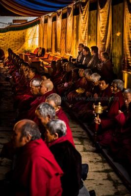 Gangtey Goemba full of Monks