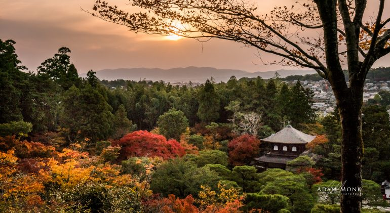 Photo tour to Japan in Autumn with Adam Monk and Robert van Koesveld