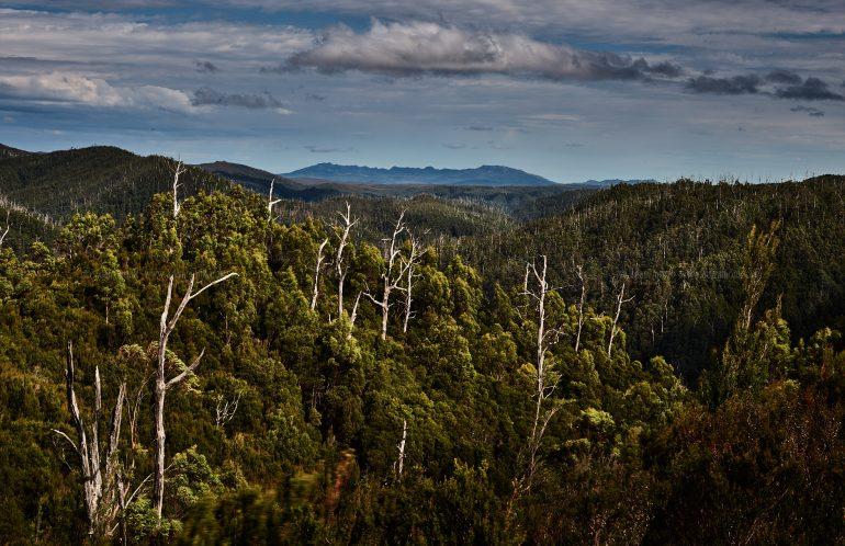 Tasmania Photo Tour
