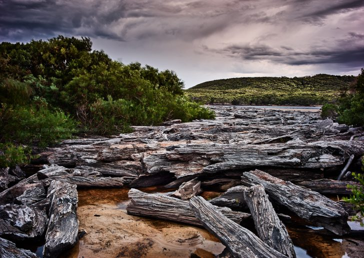 Tasmania Photo Tour
