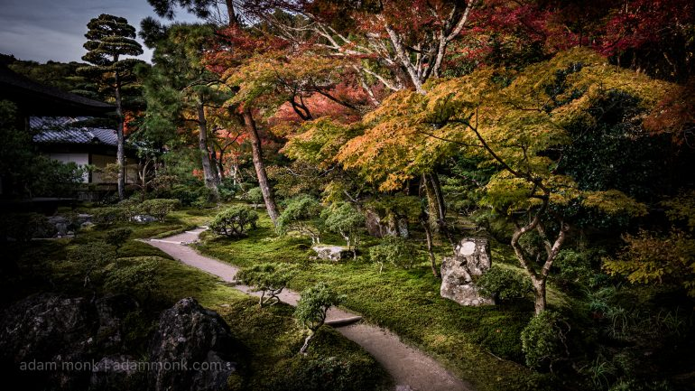 Japan Autumn Photo Tour